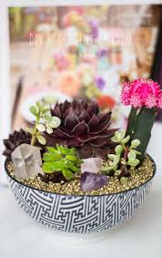 diy succulent diy succulent garden the blondielocks life style