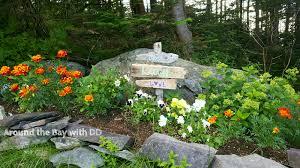 how does your garden grow u2026 u2013 around the bay with dd