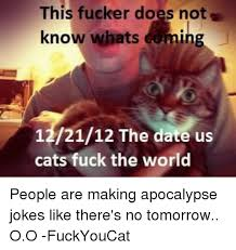 Fuck The World Memes - 25 best memes about cat fucking cat fucking memes