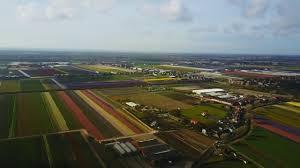 Netherlands Tulip Fields A Flight Over The Netherlands Tulip Fields Youtube