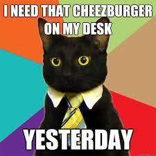 Meme Cheezburger - i need that cheezburger cat meme cat planet cat planet