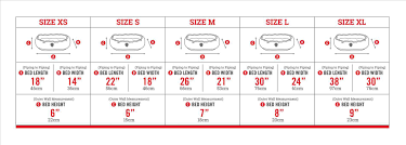 Standard Curtain Sizes Chart by Bed Sheet Sizes Chart Vanvoorstjazzcom