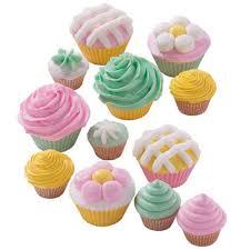 12 piece cupcake decorating set wilton