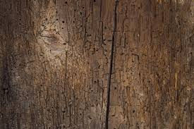 Wood Texture by Free Stock Wood Textures Old Wood Cg Textures Free Download