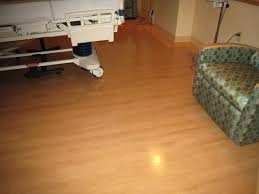 Can You Clean Laminate Floors With Bleach 5 Tile And Grout Myths Complete Floor Care Solutions