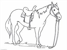 free printable anatomy coloring pages horses coloring pages of horses coloring pages free printable