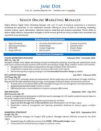 Marketing Resume Sample by Online Marketing Resume Example Seo Advertising