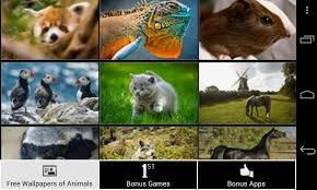 free wallpapers of animals hd android apps on google play