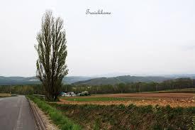 nissan skyline ken mary ken u0026 mary tree travelikeme