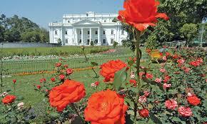 ilm walled garden pakistan you u0027re beautiful blogs dawn com