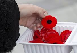 Can You Wear The American Flag As Clothing Poppy Protocol Six Rules You Need To Follow Toronto Star