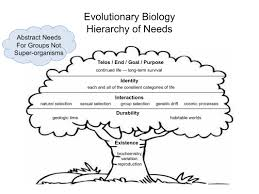 evolutionary philosophy evphil blog
