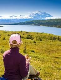 brilliant colors of denali national park alaska wallpapers 252 best alaska images on pinterest homer alaska alaska travel