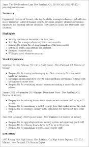 professional resumes exles sweetlooking director of security resume exles astounding sle