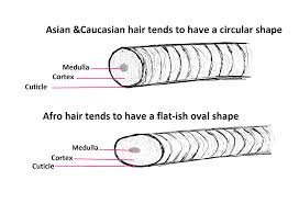 hair relaxer for asian hair what is it about our hair diffrences between afro asian and