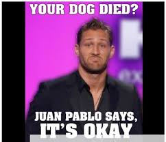 The Bachelor Memes - best 25 bachelor memes ideas on pinterest death of a bachelor