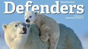 worth defending gunnison grouse defenders of wildlife