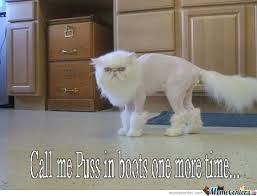 Puss In Boots Meme - puss in boots by kurttheinfidel meme center