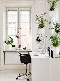 plantes bureau décoration bureau plantes exemples d aménagements