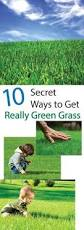 having trouble growing grass well with a quickgrass pro erosion