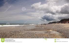 cape cod sandy neck beach stock footage video 76953584