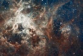 30 doradus tarantula nebula space wall mural 30 doradus tarantula nebula space mural