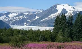 Alaska Travel Toothbrush images How to save money on your alaska cruise alaska shore tours jpg