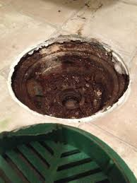Basement Floor Drain Backing Up Commercial Residential Floor Drains Clogged In Minneapolis