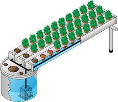 hydroponics and aeroponics gardening systems plant nutrients