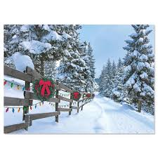 forest lane christmas cards current catalog