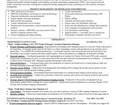 Entry Level Business Analyst Resume Sample by Entry Level Business Analyst Resume Pdf Business Analyst Resume