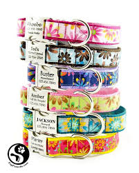 Buster Comfort Collar Best 25 Personalized Dog Collars Ideas On Pinterest Engraved