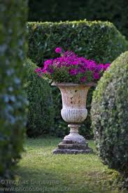 158 best urns images on garden urns beautiful flowers