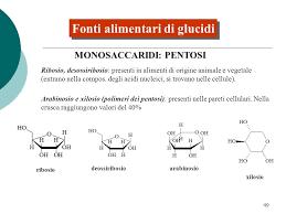 glucidi alimenti glucidi negli alimenti ppt scaricare