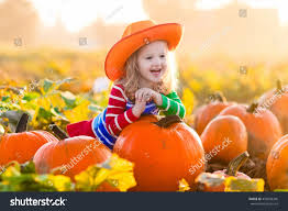 little picking pumpkins on halloween stock photo 459558340