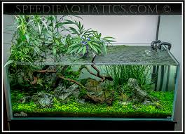 Aquascape Online Nick U0027s Ada 120 P Journal
