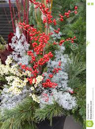 christmas floral arrangement stock photo image 80822002