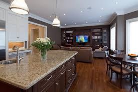 amarello ornamental granite kitchen traditional with speckled