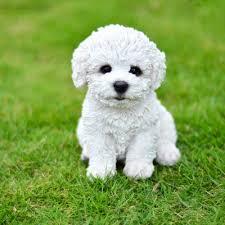 bichon frise quilt hi line gift ltd sitting bichon frise puppy statue u0026 reviews