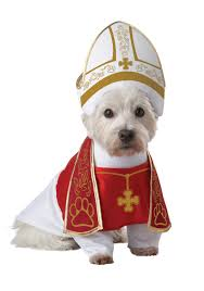 costumes for dogs holy hound pet costume