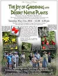 drought tolerant native plants uncategorized the power of plants