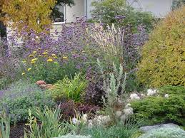 dreams of being green gardening tips for a brown thumb