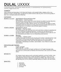 curriculum vitae pizza chef 838 public service cv examples government cvs livecareer