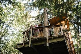 Tree House Home 9 Washington State Treehouse Rentals Perfect For A Weekend Getaway