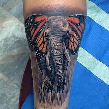 butterphant elephant butterfly best design ideas