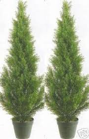 2 artificial 3 cedar topiary tree outdoor uv plant 36 patio