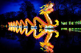 Stone Zoo Lights by 17 Fun Things To Do In Raleigh Durham Over Thanksgiving