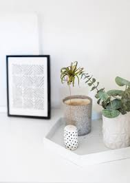 Air Plant Wall Holder Give A Plant A Home