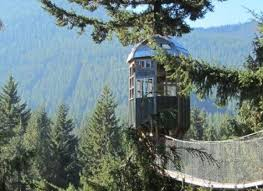 Tree Houses 10 Incredible Tree House Hotels In The U S Huffpost