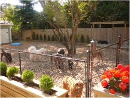 backyards stupendous garden design with droolworthy dog friendly